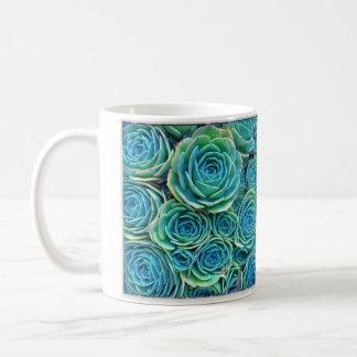 Taza azul de Echeveria