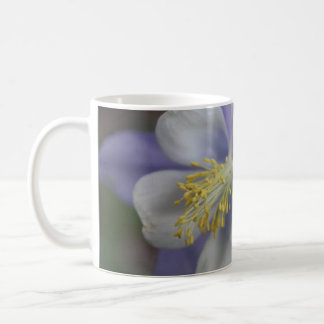 Taza azul fresca de la flor IV
