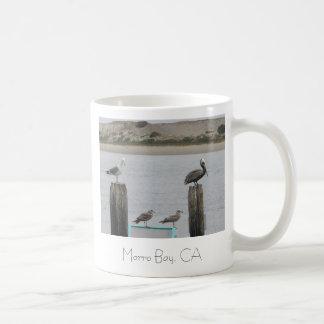 TAZA bahía de Morro CA