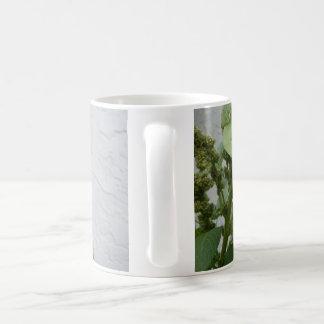 Taza blanca clásica de la espinaca salvaje