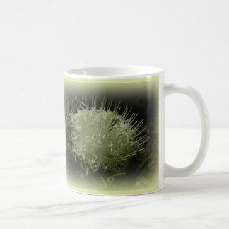 Taza blanca de la flor de los espaguetis
