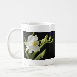 Taza blanca de la orquídea (3)