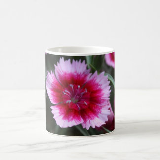 Taza candente de la flor III
