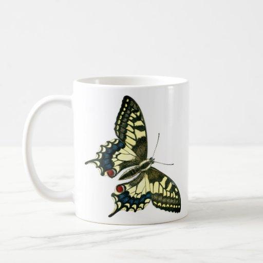 Taza cetrina de la mariposa de la cola