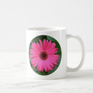 Taza, círculo de la margarita africana del rosa taza clásica