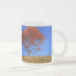 Taza clara del día del otoño