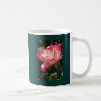 Taza color de rosa abigarrada