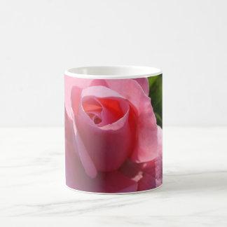 Taza color de rosa rosada bonita II