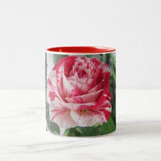 Taza color de rosa salpicada roja