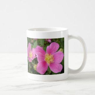 Taza color de rosa salvaje de Alberta