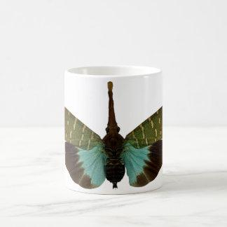 Taza con los lanternflies (planthoppers)