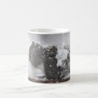 Taza congelada de la ardilla