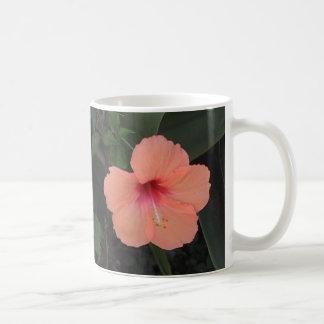 Taza coralina del hibisco