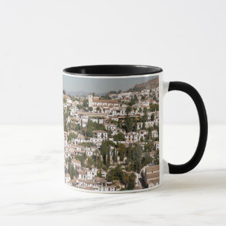 Taza de Albaycin Granada
