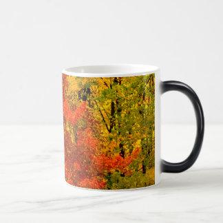 Taza de Autum Coffe