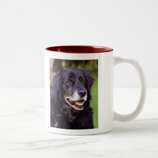 Taza de café adaptable