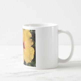 Taza de café amarilla de Delite