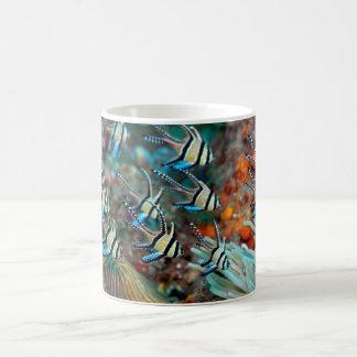 Taza de café con diseño cardinal de los pescados