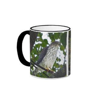 Taza de café con las imágenes del halcón