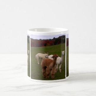 Taza de café de 3 alpacas