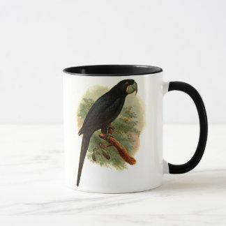 Taza de café de Anadorhynchus Purpurascens