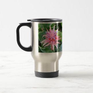 Taza de café de Bromeliad