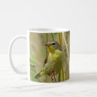 Taza de café de dos Yellowthroats