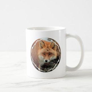 Taza de café de la especie del Fox