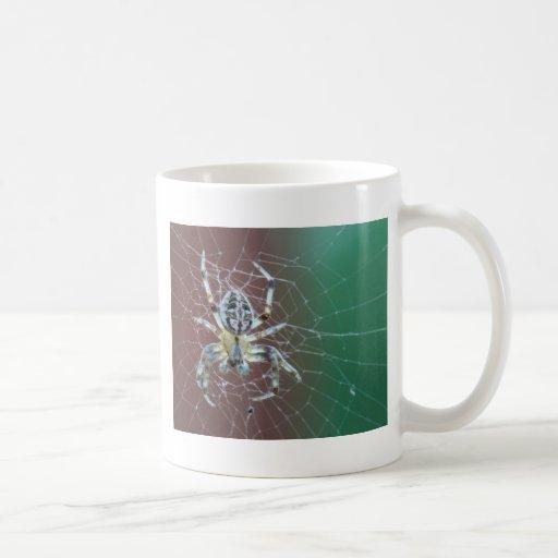 Taza de café de la fotografía de Christy Patino
