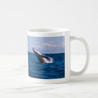 Taza de café de la infracción de la ballena