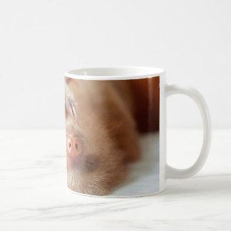 Taza de café de la pereza