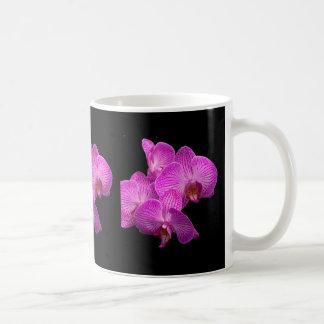 Taza de café de las orquídeas de la lavanda