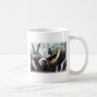 Taza de café de los monos de Guenon