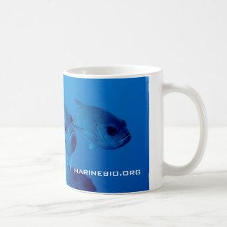 Taza de café de MarineBio