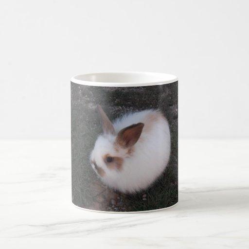 Taza de café del conejo de conejito del angora