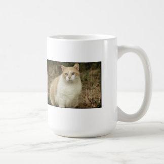 Taza de café del gato que se sienta