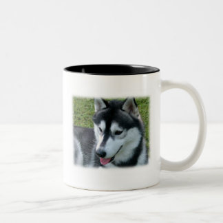 Taza de café del husky siberiano