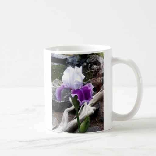 Taza de café del iris