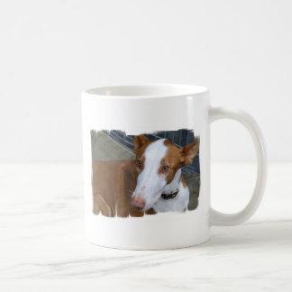 Taza de café del perro de Ibizan