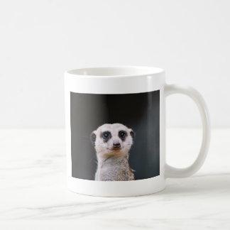 Taza de café del puesto de observación de Meerkat