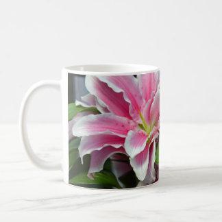 Taza de café floral del lirio rosado del stargazer