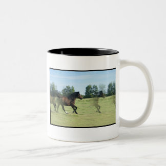 Taza de café galopante de los mustangos