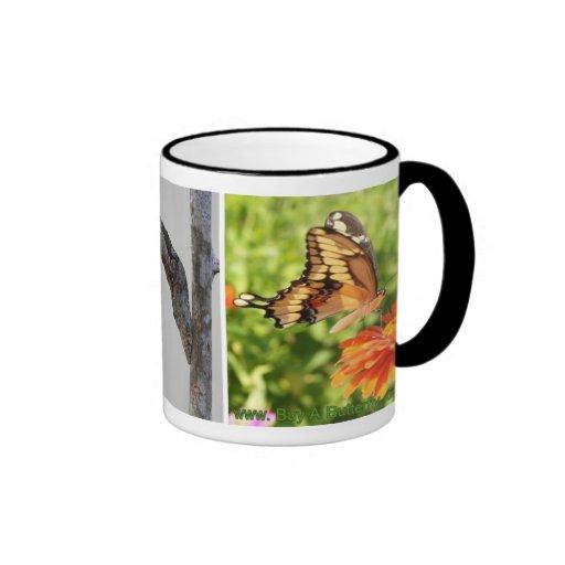 Taza de café gigante del ciclo vital de la maripos