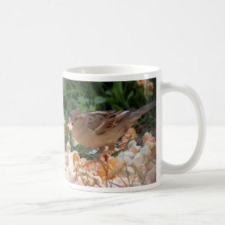 Taza de café hambrienta del chirrido