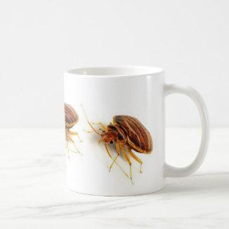 Taza de café - lectularius de la chinche (insecto