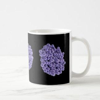 Taza de café - MRSA (violetas en fondo negro)