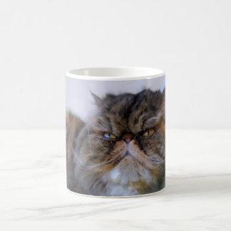 Taza de café orgullosa del gato persa del calicó