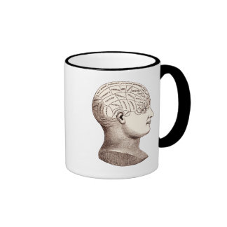 Taza de café seccional del cerebro frenológico del