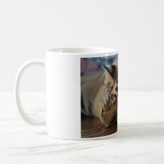 Taza de café - tigre Cub del templo del tigre de