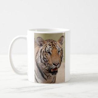 Taza de café - tigre de Tailandia